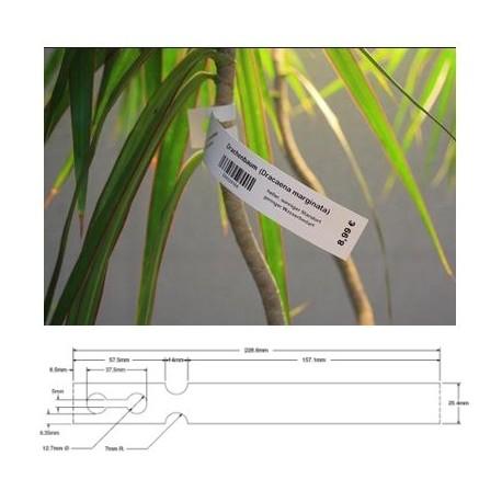 """Zebra 8000T Extra Tuff 180 Tag - 25 mm x 229 mm - étiquettes polyoléfine blanc """"pépinière"""""""